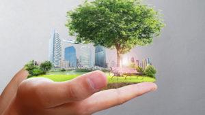 Hand holds sustainable world